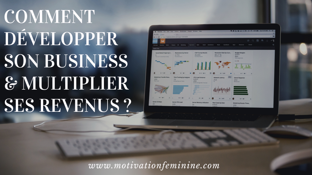 developper business multiplier revenus