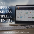 developper business multiplier revenus